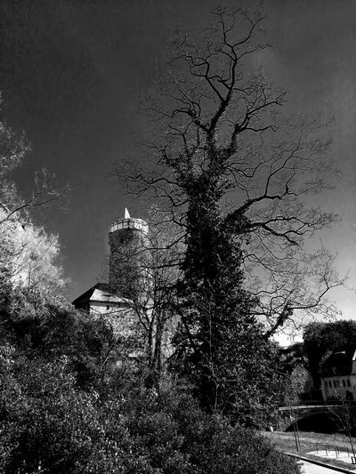 Blackandwhite Black & White Turm Unforgettable ♥ Unforgettable Moment Pixelated Dissolving Tree Abstract Close-up Sky Single Tree