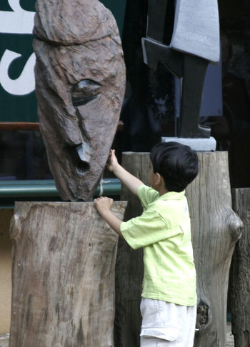 A young boy examins a wood carving - Kirstenbosch National Botanical Gardens - Cape Town, South Africa Cape Town, South Africa Kirstenbosch Botanical Gardens Black Hair Boys Casual Clothing Childhood Day Elementary Age Holding Leisure Activity Lifestyles One Boy Only One Person Outdoors People Real People Rear View South Africa 🇿🇦 Standing Three Quarter Length Tree