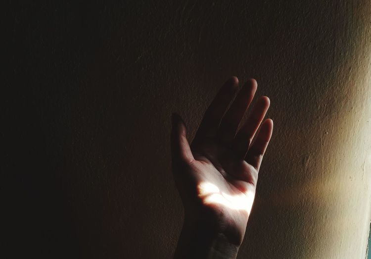 Close-up of hand against wall