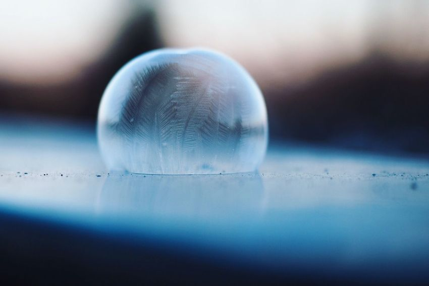 •frozen• Cold Winter Bubble Frozen Dawn Close-up No People Selective Focus Focus On Foreground Fragility