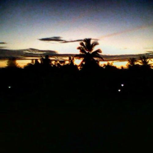3 years ago with old-phone-cam. morning or evening ?