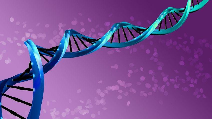 3d illustration Molecule Molecula Mendel Double Helix 3D Illustration 3d Model Medicina Helix Heritage Herencia Chromosome Genetics Genetica Gen Ciencia Cience Hélice Dna Adn No People
