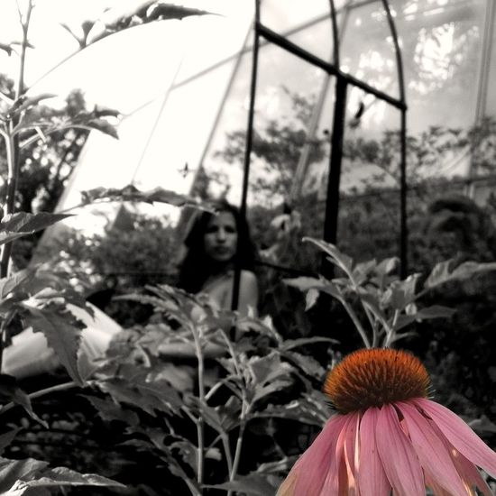 Selective Color IPh0 AMPt_community Mobile Photography
