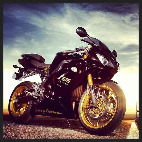 Triumph Daytona 675 Triple gold black beautiful bike want my future superbike? angle eyes ooft like instalike