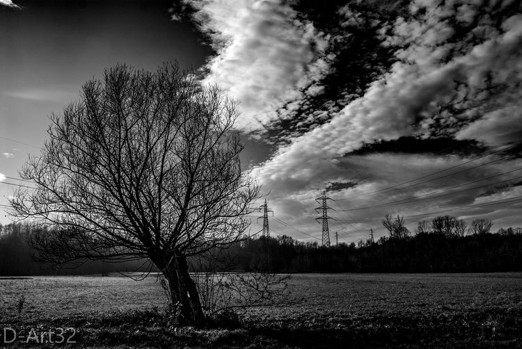 Monochrome Photography Sky Tree Black And White No People Nature Cloud - Sky Outdoors Beauty In Nature Day Horizontal Tranquility Nikonphotography