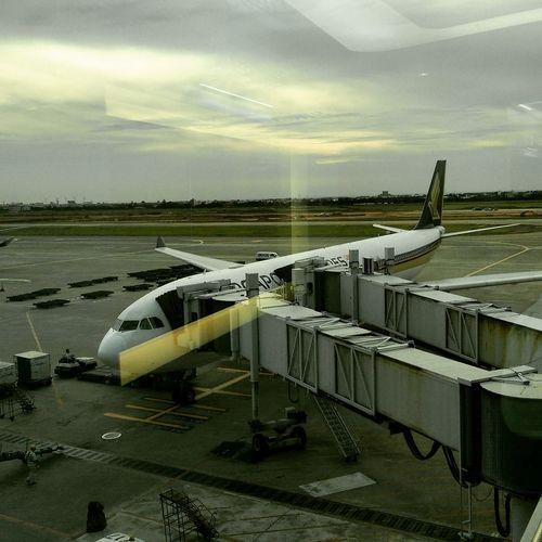 AirPlane ✈ Taipei,Taiwan Beijing, China Traveling Comehome