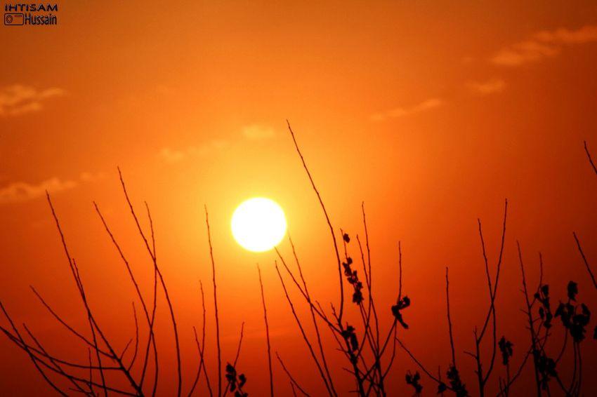 Sunsets Orangesky Sunsets_oftheworld Sunsets_capture Sunsetsgram Sunsetsky 📷 By Me
