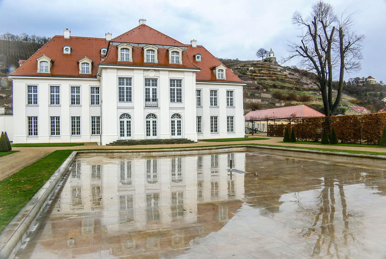 Wine Region Radebeul in Saxony on the Elbe River Castle Tree Vinery Building Exterior Mountain Reflexions Water Wine Yard Architecture Built Structure House Reflection Residential Building Outdoors Nature Day