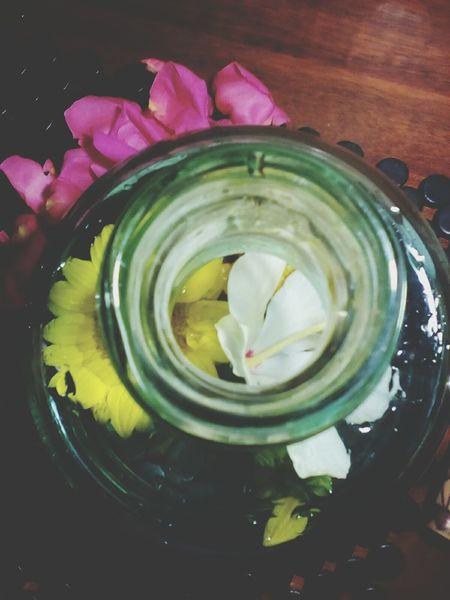 Bouquet In A Bottle Inside Flowerporn Bottled