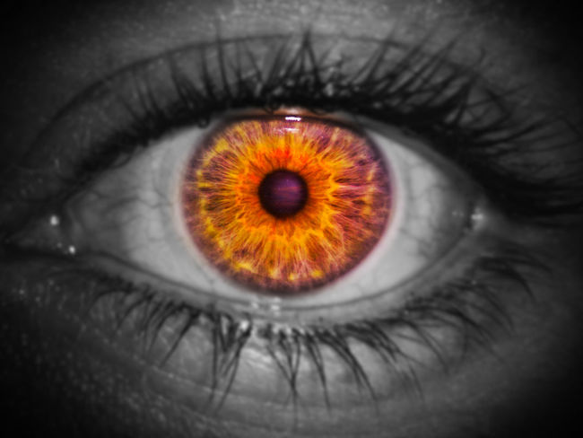 Human Eye Human Body Part Eyesight Eyelash One Person Iris - Eye Eyeball Sensory Perception Close-up Full Frame People One Woman Only Adults Only Adult Day Outdoors Œil Pour œil… Oeil Iris Color Black & White