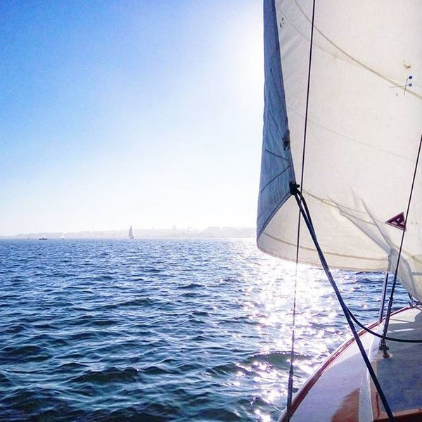 Sailing with the wind.. Cnbb Aveirolovers