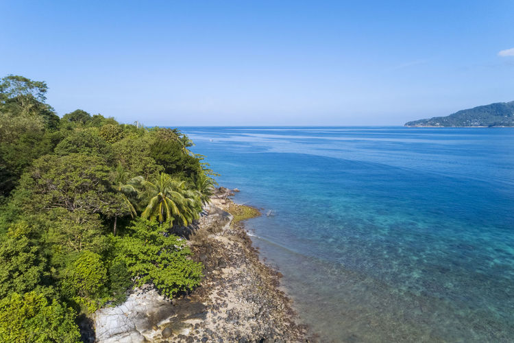 Sea Water Scenics - Nature Beauty In Nature Sky Tree Land Plant Tranquil Scene Tranquility Beach Nature Horizon Over Water No People Horizon Day Blue Clear Sky Idyllic Outdoors Bay