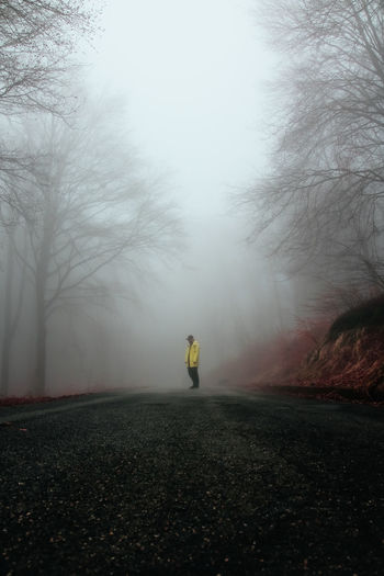 Atmosphere Autumn Halloween Invisible Low Angle View Spotted Tree Wood Bare Tree Cold Temperature Creepy Fog Fog In The Trees Foggy Foggy Day Full Length In The Woods Moodygrams One Person One Point Perspective Outdoors Perspective Photography Road Weather Winter