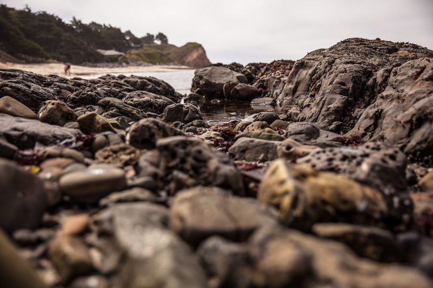 Beach Beauty In Nature Day Land Nature No People Outdoors Rock Rock - Object Rock Formation Scenics - Nature Sea Selective Focus Sky Solid Surface Level Textured  Tranquil Scene Tranquility Water