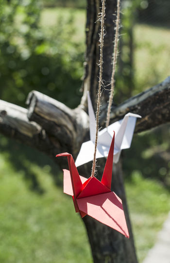 Close-up of paper crafts hanging outdoors