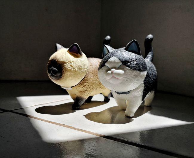 Cat Cat Toy
