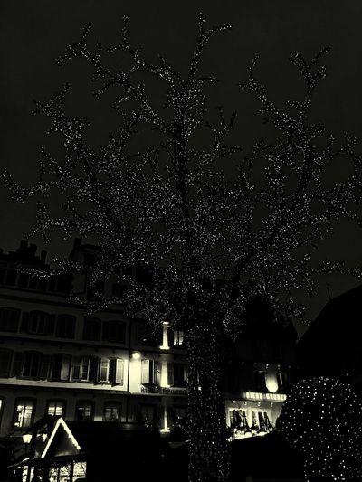 Strasbourg Marché De Noël Guirlandes Happy Christmas