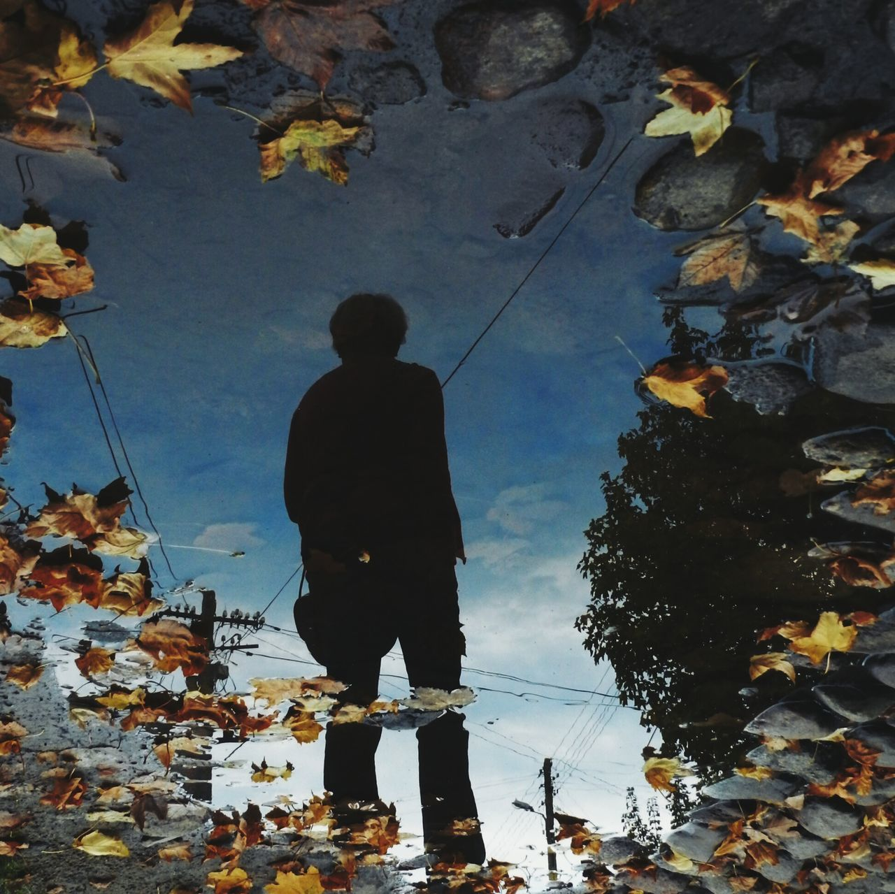 Reflection Of Man In Puddle At Dusk