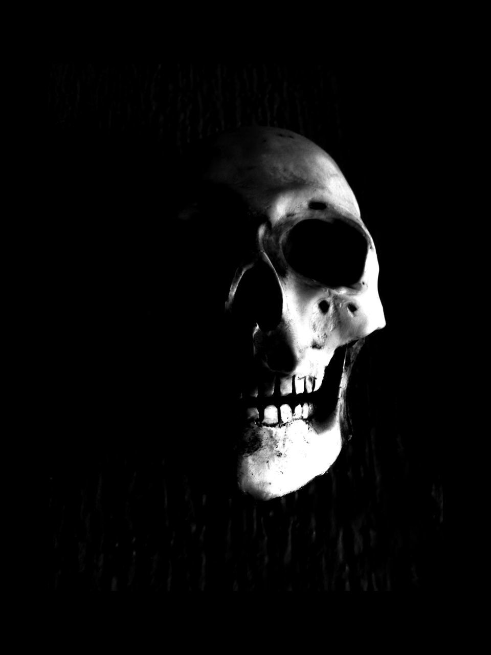 spooky, horror, human teeth, close-up, human skull, indoors, human body part, halloween, evil, human face, one person, day