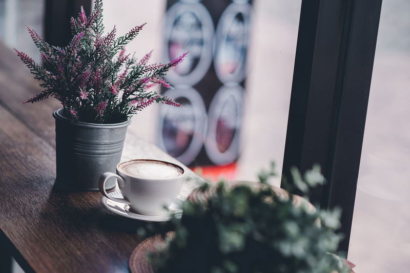 High angle view of potted plants and coffee cup on table by window