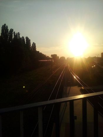 Transportation Sun Connection Sunlight Train - Vehicle Public Transportation Sunset Bridge - Man Made Structure Bright First Eyeem Photo Taking Photos City My City Zabrze