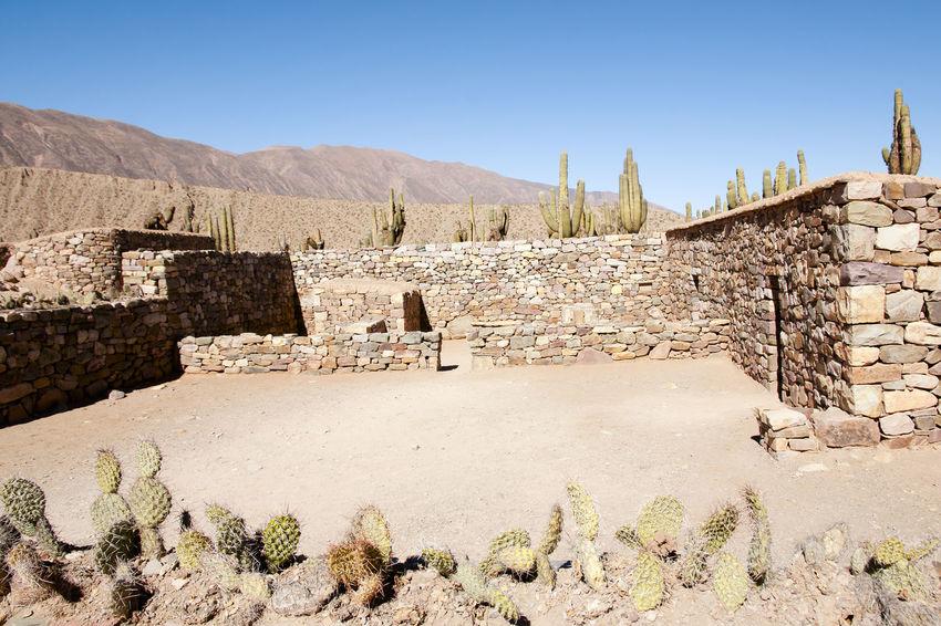 Pucara de Tilcara Ruins - Jujuy - Argentina Ruins Ancient Civilization Argentina Arid Climate Jujuy Pucara Pucará De Tilcara Tilcara