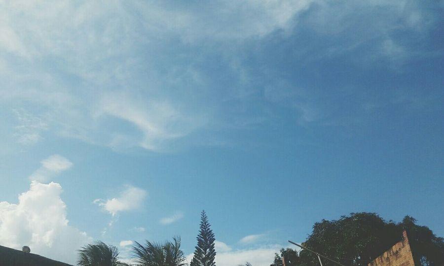 Meus Natureza ♡ Céu Azul. Sole...☀ Goodvibes