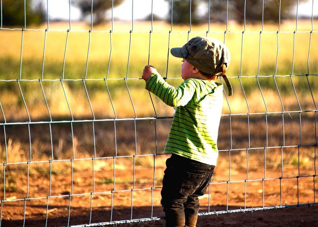 Let me in!! Rural Photography Rural Scenes Farmlife Farm Fence Knit Hat Hood - Clothing Standing Casual Clothing Outdoors Nature