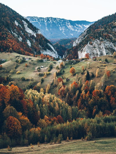 Beautiful Landscape_Collection Nature Nature Photography Romania Scenic Autumn Beauty In Nature Beauty In Nature Day Grass Landscape Landscape_photography Mountain Mountain Range Nature Nature_collection No People Outdoors Scenery Scenics Sky Tranquil Scene Tranquility Tree