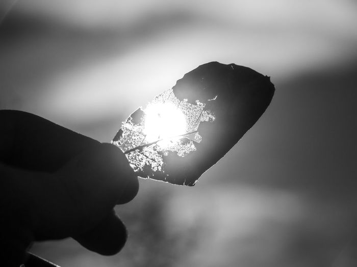 Human Hand Hand Holding Human Body Part One Person Real People Focus On Foreground Close-up Unrecognizable Person Body Part Nature Human Finger Finger Lifestyles Outdoors Glowing Day Crystal Cold Temperature Ice Light Melting