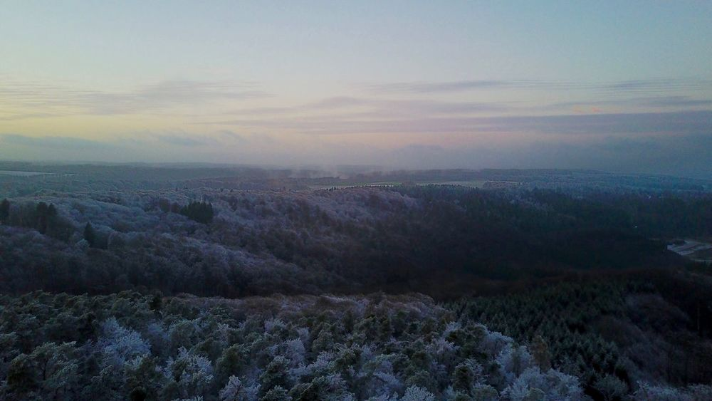 Cold afternoon Scenics Beauty In Nature Tranquility Tranquil Scene Landscape Sky No People Outdoors Tree Day Dji Drone  Dronephotography Drone Photography Djimavic Snow White Forest Whiteforest  Snowforest Arial Shot Arialview High Sunset Flying High