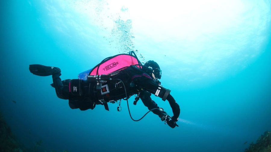 Diver! Scuba Diving Underwater Adventure UnderSea Exploration Water Sea Swimming Scuba Diver Aqualung - Diving Equipment Real People Leisure Activity Low Angle View Blue One Person Extreme Sports Nature Sea Life Lady Uwphotography Drysuit Santidiving Tecline Hotpink Republic Of Korea