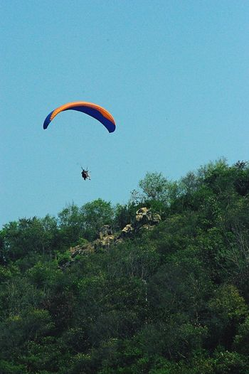 Traveling One Person Paragliding Adventure Clear Sky Real People Freedom Outdoors Extreme Sports Nature Travel Photography Thai Tranquility Lush Foliage Thailand Koh Larn Fotor Pentax Outdoor Photography Nature Travel Destinations (null)Travel Tourist Tourism