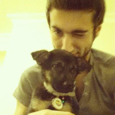 Kızımı da Fenerbahçeli yaptım Fenerbahce  GSD Mischa Germanshepherdlove puppy FB cute dog instamood instagood instalike
