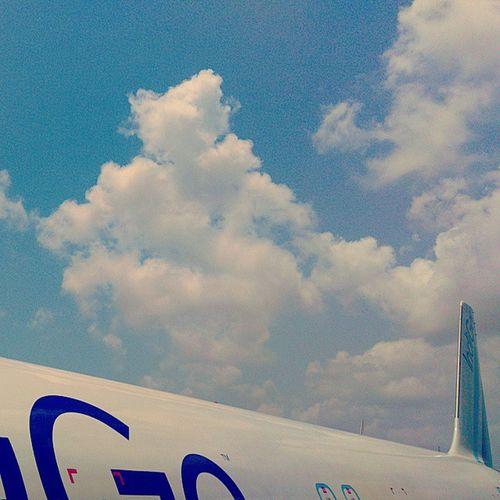 your pilot Bangalore Travel Finding Sky Hangover Ashesoftime Flightselfie