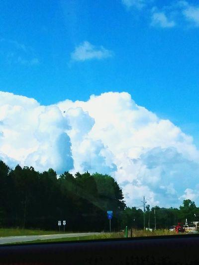 White Clouds Blueskies Tree Sky Cloud - Sky