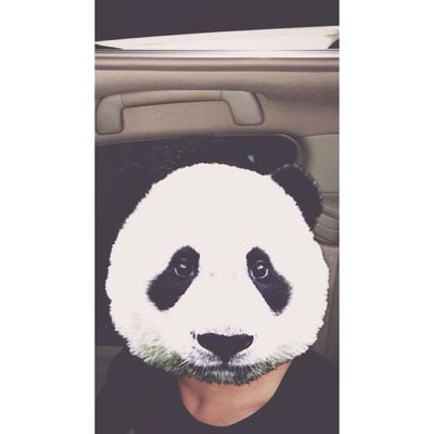 Panda sad object 😂 Check This Out That's Me Hanging Out Hello World Cheese! Taking Photos Enjoying Life