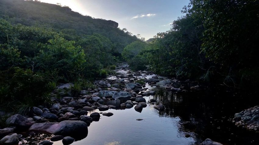 Beauty In Nature Brazil Chapada Diamantina Forest Jungle Nature No People Outdoors Pebble Reflections River Riverbank Rock - Object Rocks Rocks And Water Tranquil Scene Trecking Tree