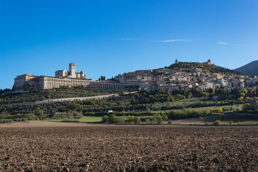 Assisi Autumn Basilica Church Field Saint Francis Of Assisi Architecture Blue Building Exterior Built Structure Castle Clear Sky Countryside Day Fall History Medieval Medieval Architecture Nature No People Outdoors Sky Town Tree Umbria