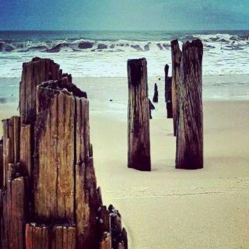 Nature Travel Brasil Paraíba Baía Da Traição Sea Beach Water Sand