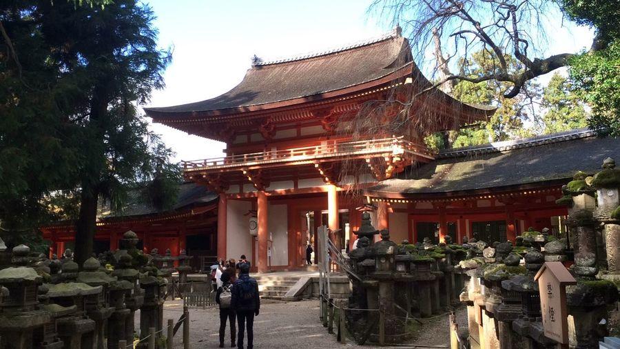 Kasuga Shrine,