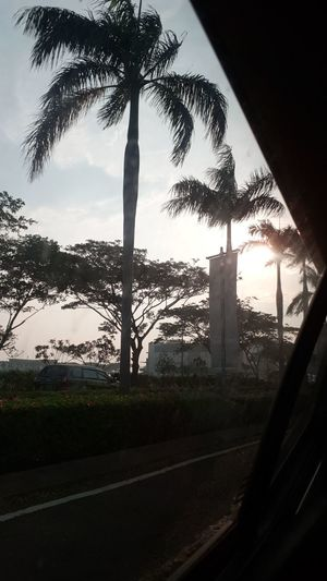 On our way Æon Mall Tree Silhouette Sky No People Shooting Photos Indonesia_photography INDONESIA Trialanderror Samsungphotography Sunset Samsunggalaxynote8 Palm Tree Amusement Park Learn & Shoot: Simplicity Qualitytime Blessedandthankful Aeon Mall Inthecar