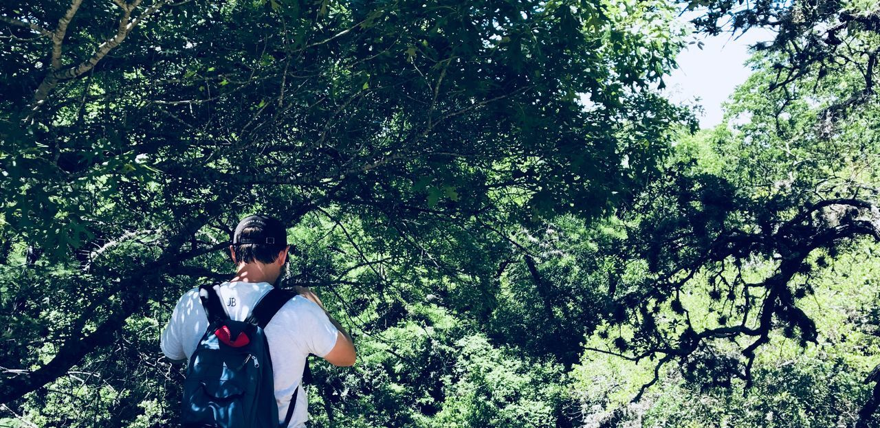 tree, real people, rear view, backpack, forest, growth, walking, hiking, nature, leisure activity, adventure, one person, outdoors, men, lifestyles, day, beauty in nature, young adult, people