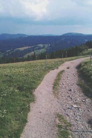 Blackforest Landscape Mountains Summer
