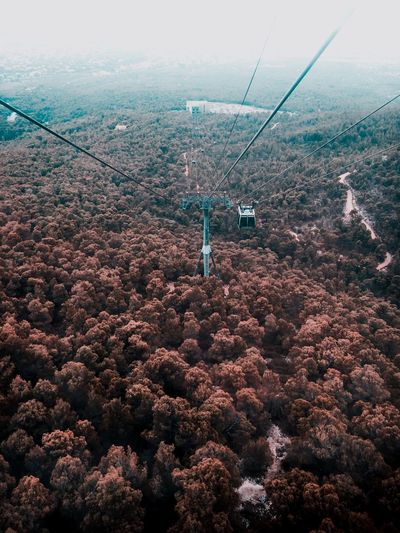 Amazing Nature Amazing View Breathtaking View Breathing Space Perspectives On Nature Red Beutiful Nature Nature Exploring Exploring Attica The Week On EyeEm EyeEm Selects Aerial View Nature Beauty In Nature Scenics Day Outdoors Tree Landscape No People