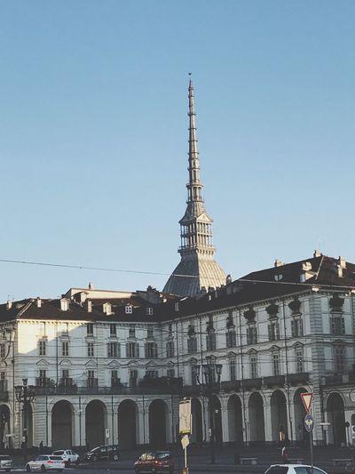 Torino Mole Sunshine