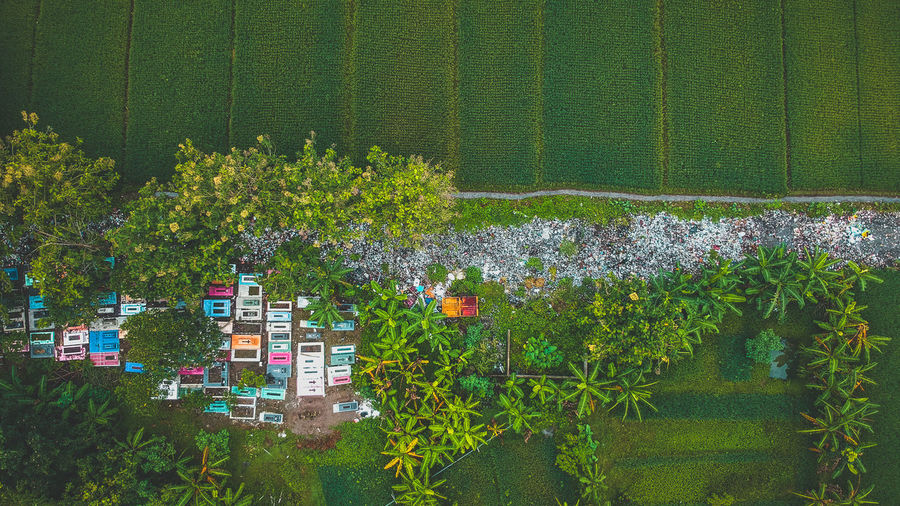 trash and cemetery #green #aerialphotography EyeEm Selects Street #tree #Paddy #green #paddyfield #cemetery #path #scenery