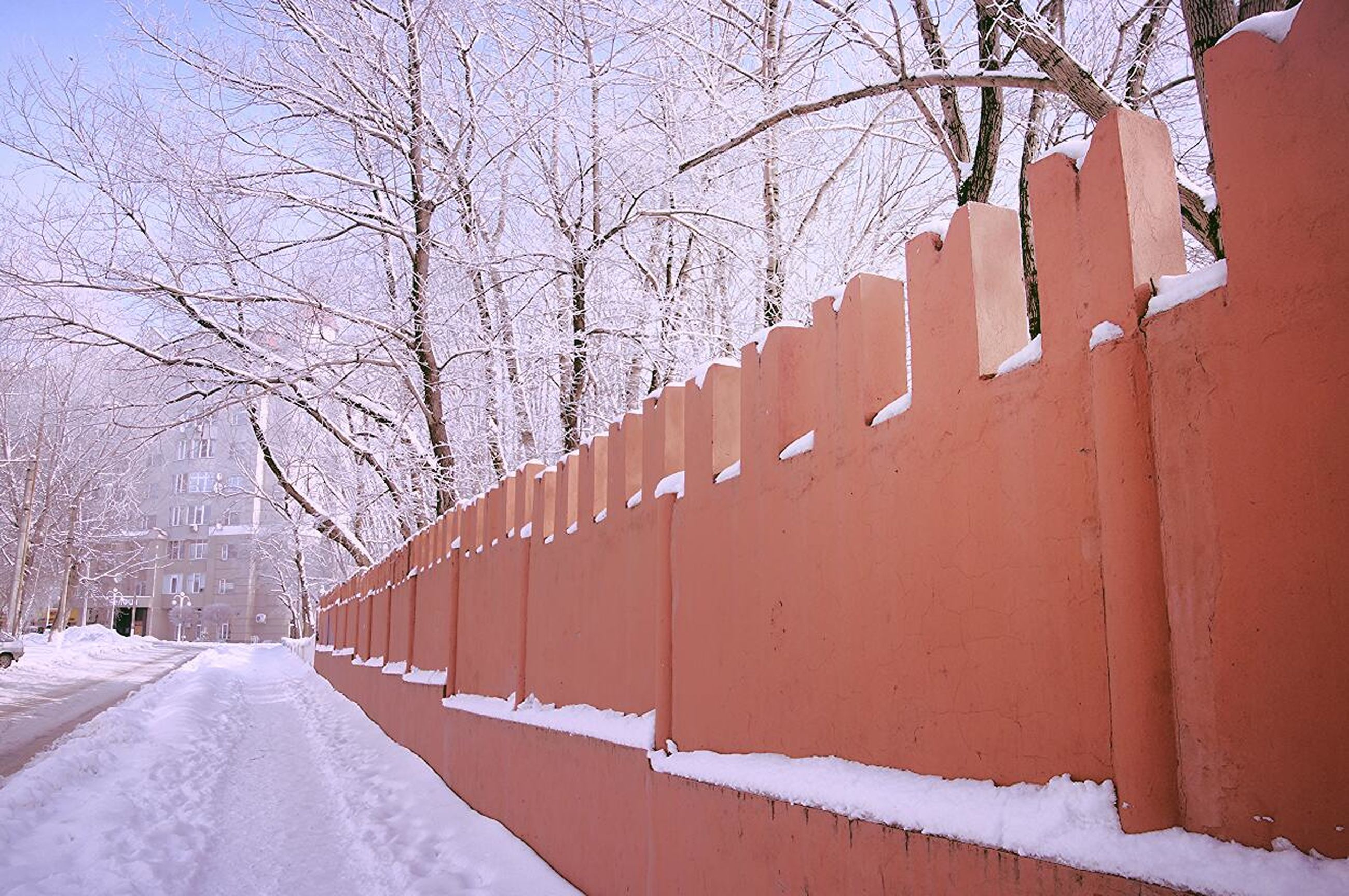 tree, snow, cold temperature, no people, outdoors, picket fence, day, military