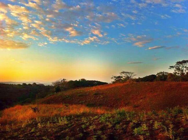 Photography Fotografia Captured Moment Amour ❤ Sunset_collection Eye Em Nature Lover