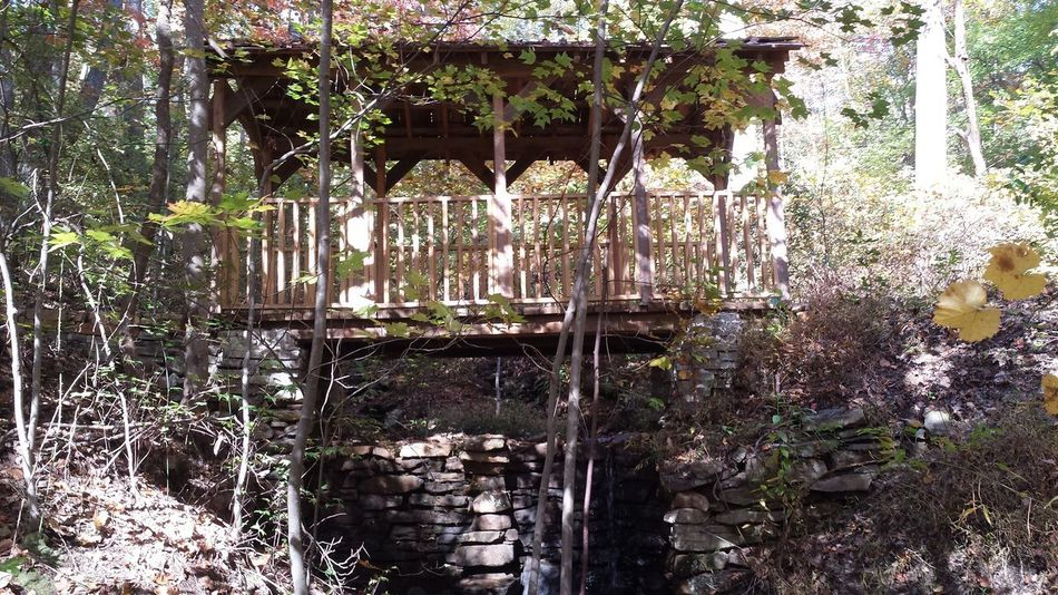 Nature Nature Photography Architecture Outdoors Built Structure No People Bridge Perspectives On Nature